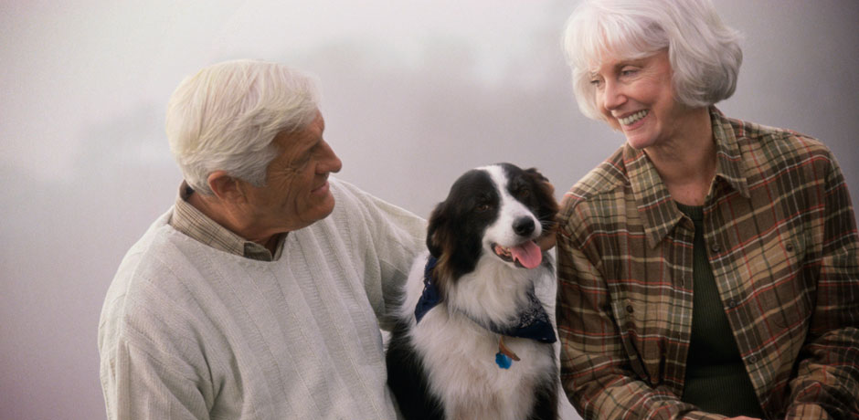 Elderly Couple with a dog