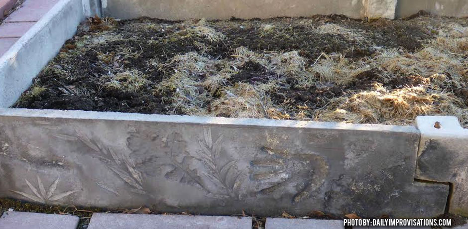 02092016_RAsied-bed-concrete-side-and-art