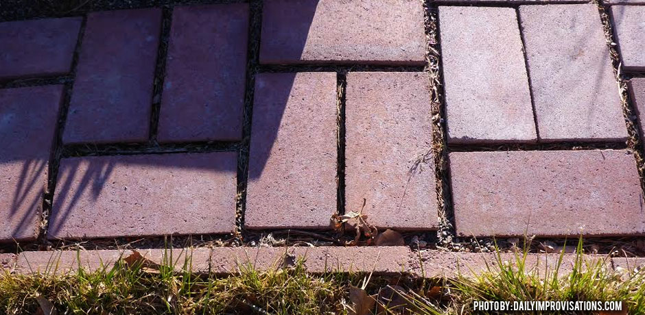 02092016_Raised-bed-pathway-with-pavers