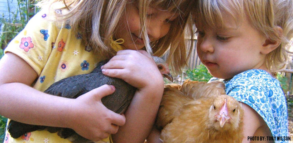 03222016_Children-Holding-Chickens