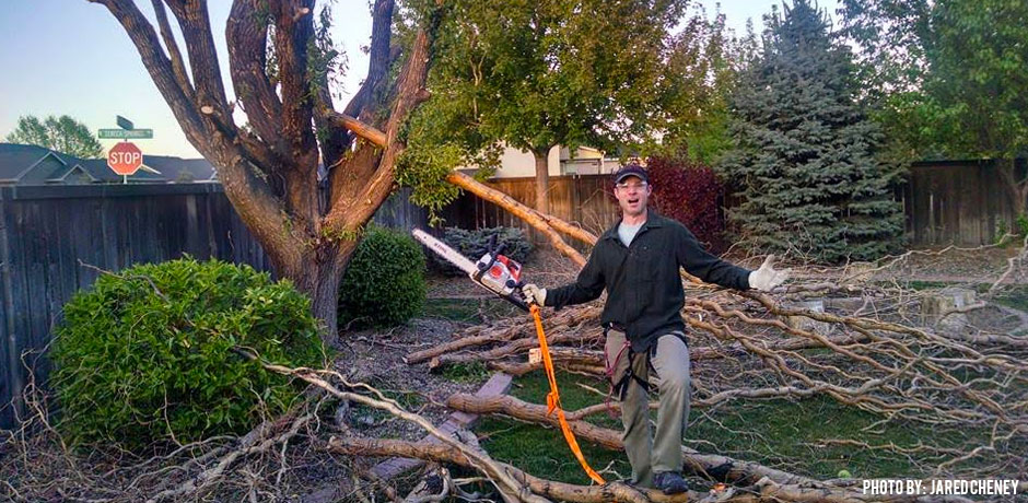 05132016_Jared-Cheney-Customer-Story-Corkscrew-Willow-and-a-chain-saw