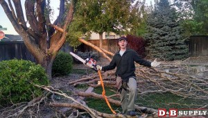 blog image for A Customer Story: My Dead Tree...