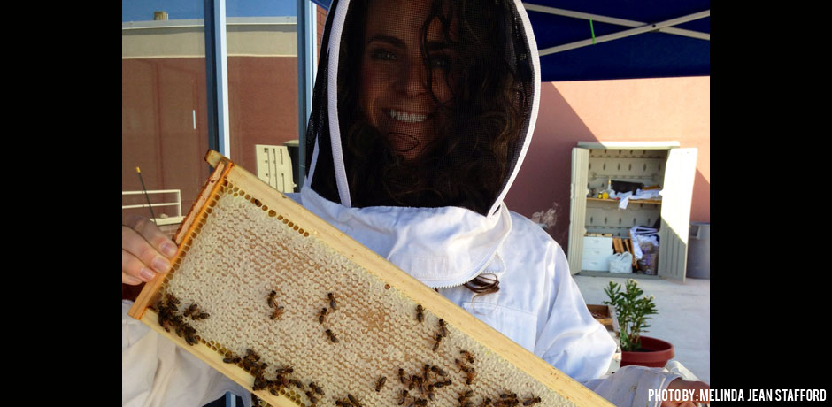 06232016_Melinda-holding-a-frame-of-bees