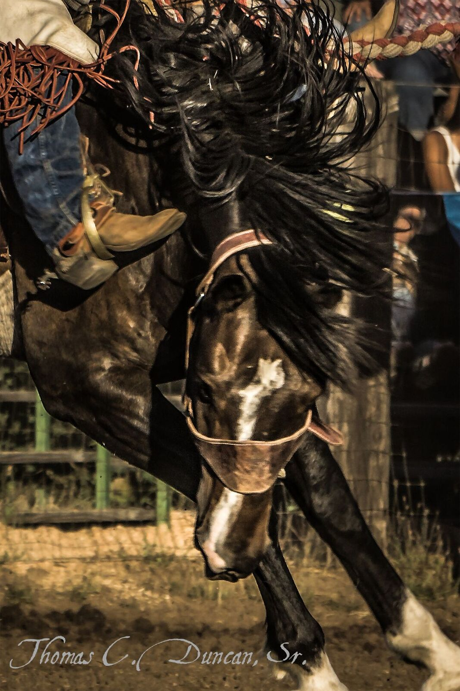 08122016_Adams-County-Rodeo-photo-by-Thomas-Duncan-6