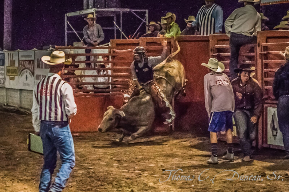08262016_Boise-Gem-Co-Rodeo-bull-rider