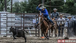 blog image for Gem Boise County Rodeo...
