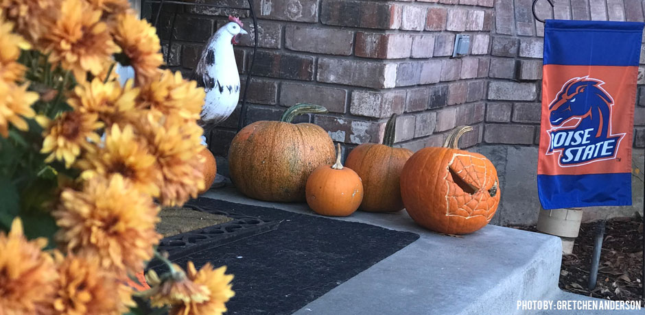 11012017_pumpkin-composting-decorative-pumpkins-on-a-porch-with-a-chicken