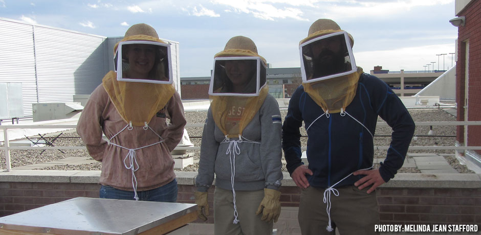 01192018_Is-Beekeeping-Easy_beekeeping-interns