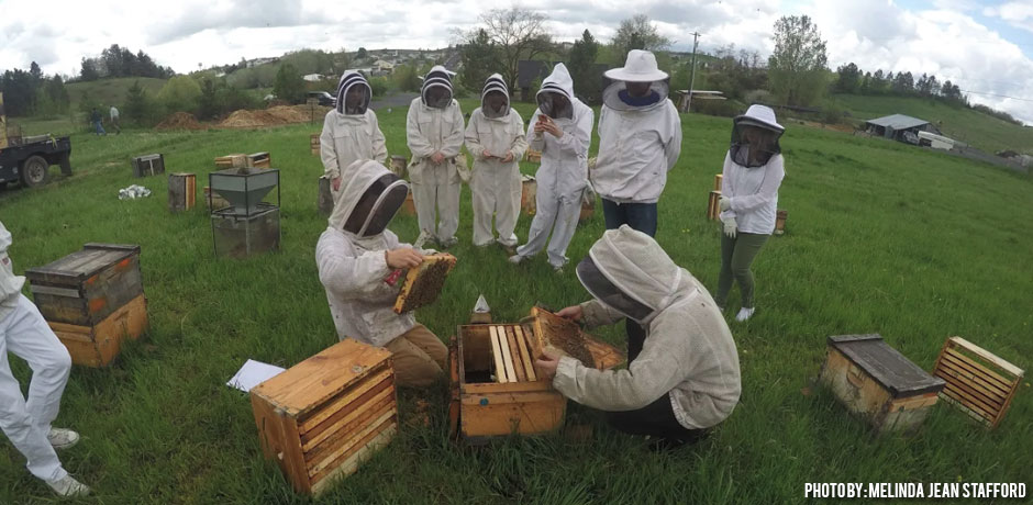 05302018_BSU-Bee-team-visits-WSU-checking-hives