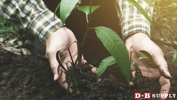 All About Composting - Hands rumaging in soil featured