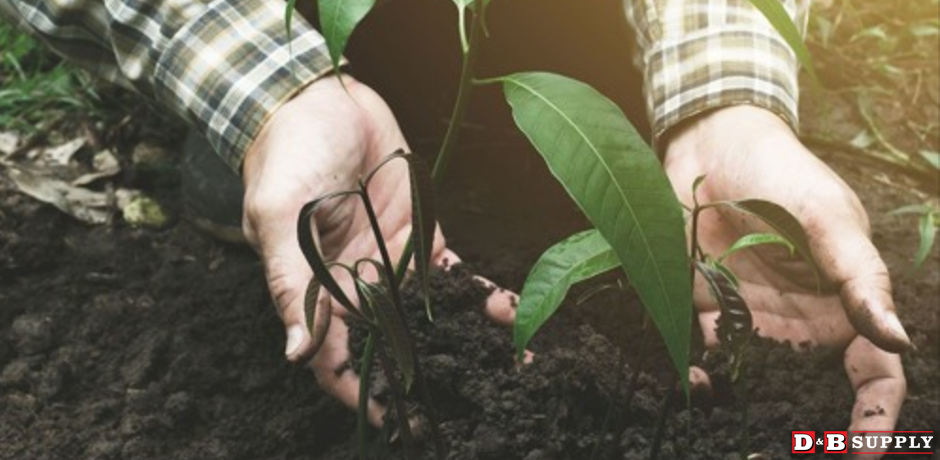 All About Composting - Hands rumaging in soil