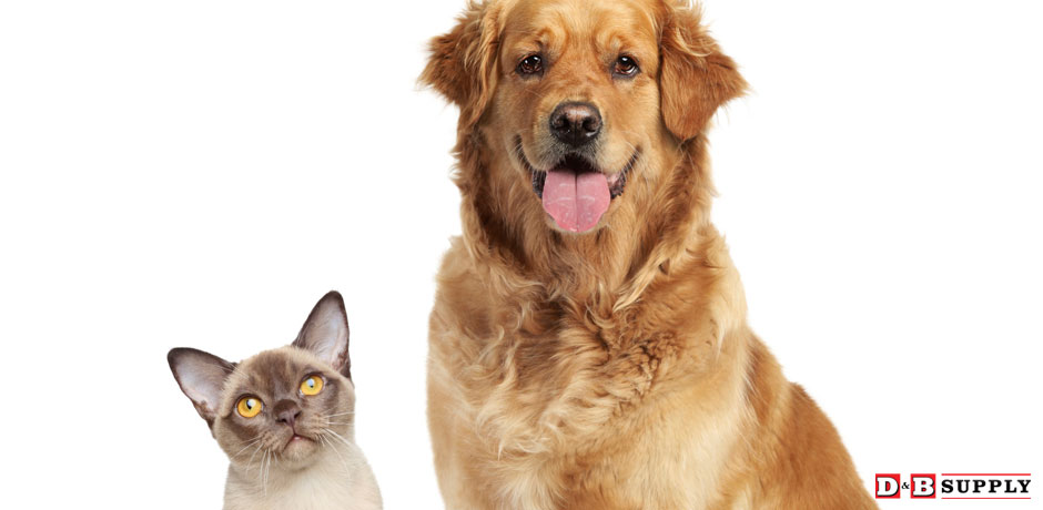 06122020_Flea-and-Tick-Solutions-Dog-and-Cat